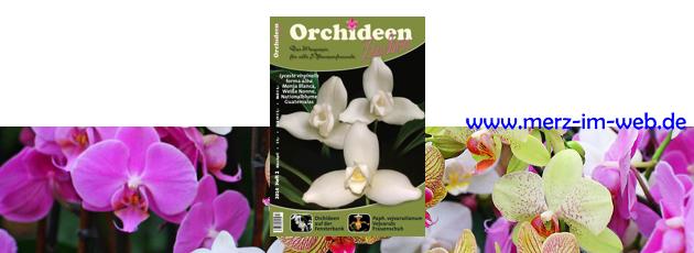 Orchideenzauber 2014 Heft 2, mit einem Bericht über Lycaste virginalis forma alba