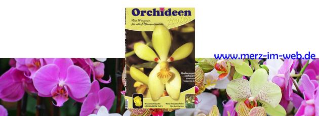 Orchideenzauber 2014 Heft 5, mit einem Kulturbericht über laubabwerfende Calanthen