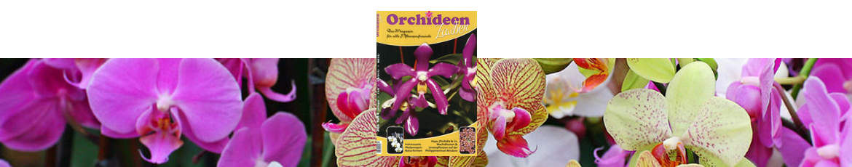 Orchideenzauber 2016 Heft 4, mit einem Artikel über Phalaenopsis pulchra.